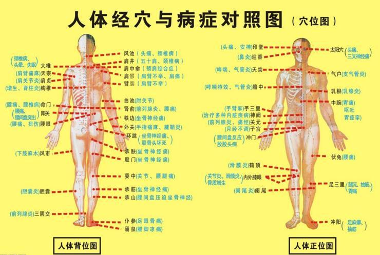 【养生知识】人体五大黄金穴位,常揉能抗衰老