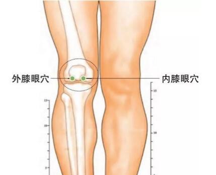 膝关节炎怎么贴小黑膏,膝关节炎的对应穴位 第4张