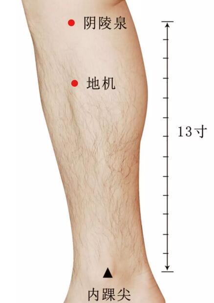 膝关节炎怎么贴小黑膏,膝关节炎的对应穴位 第5张