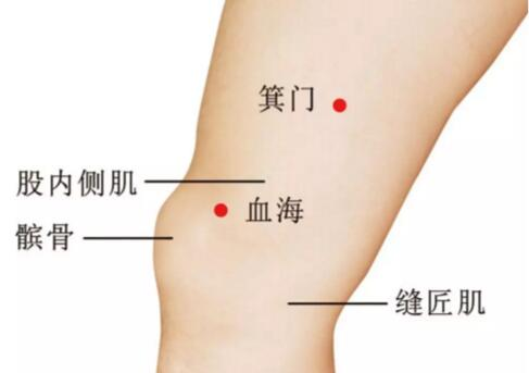 膝关节炎怎么贴小黑膏,膝关节炎的对应穴位 第8张