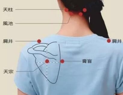 肩颈疾患之人必按:天宗穴 第1张
